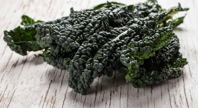 Cavolo nero: le ricette più buone da provare in inverno