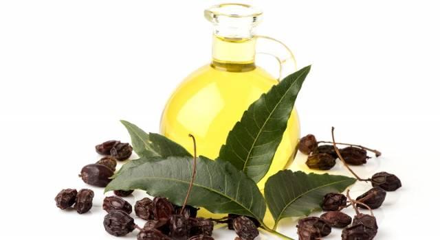 Olio di neem, un rimedio naturale contro infezioni e parassiti