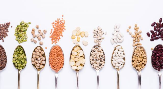 Ridurre o evitare la carne nella dieta: come fare a bilanciare il fabbisogno delle proteine