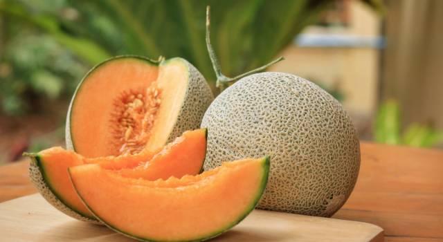 Scopriamo tutto sul melone: proprietà, benefici e ricette veloci (e gustose!)