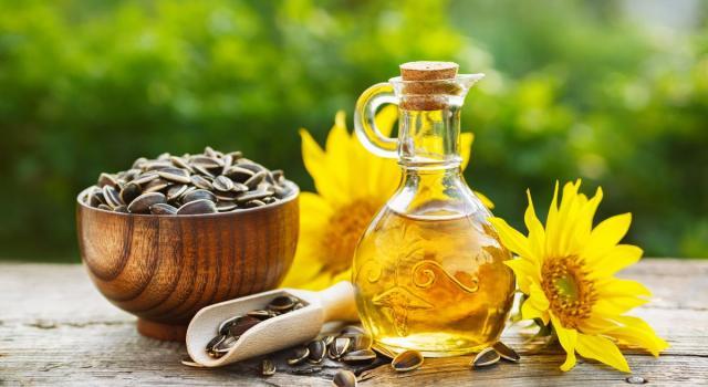 L'olio di girasole fa male? Ecco tutti i benefici e le controindicazioni