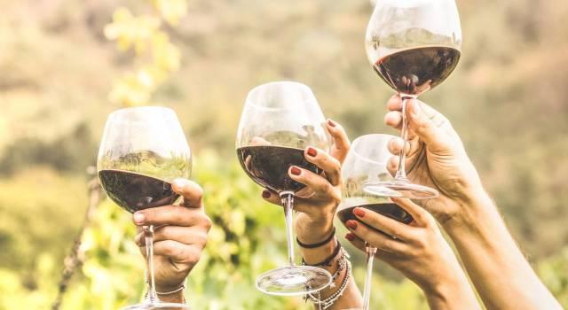 Il vino fa ingrassare? Ecco quante calorie ci sono in un bicchiere
