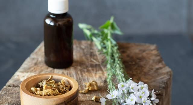 Propoli: un miracoloso aiuto della natura per la nostra salute
