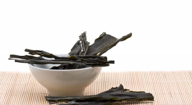 Alga kombu: scopri i suoi benefici e come usarla in cucina