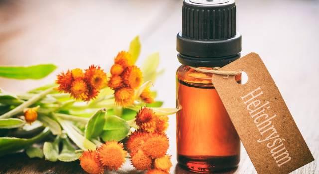 Olio essenziale di elicriso: un'essenza per combattere catarro e tossine