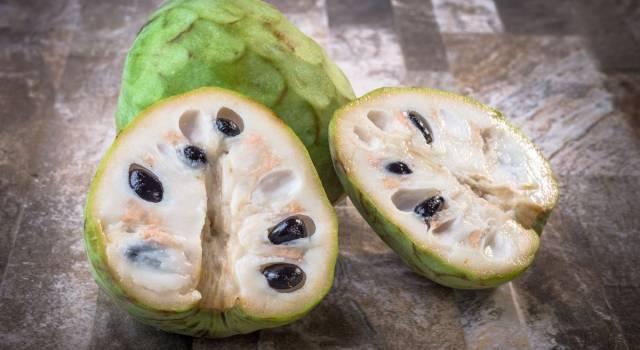 Un frutto che sembra gelato: alla scoperta dell'annona