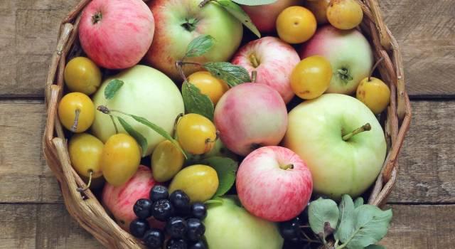 Frutta di stagione di agosto:  ecco cosa scegliere
