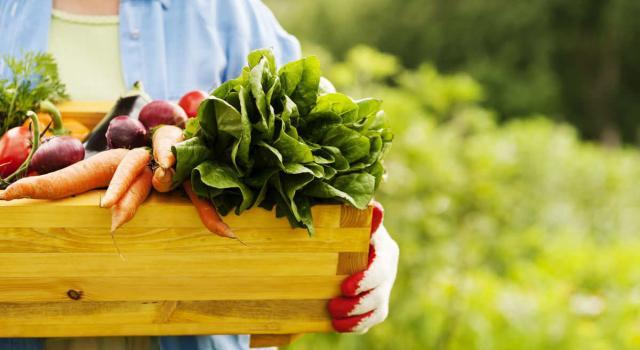 Verdure di stagione di aprile: scopri quali sono per mangiare in modo più naturale