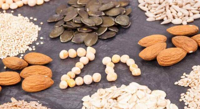 Alimenti ricchi di zinco: quali sono e perché fanno bene all'organismo